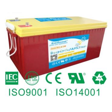 Аккумуляторная батарея EverExceed DM-12200
