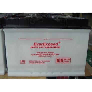 Аккумуляторная батарея EverExceed TER-6230 (6V230Ah)