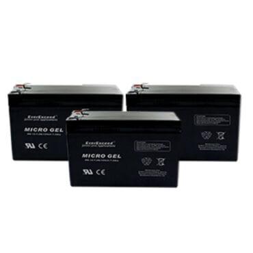 Аккумуляторная батарея EverExceed MG 6-7.2G
