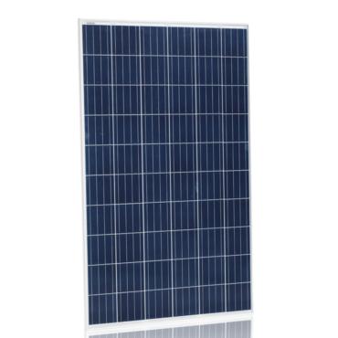 Солнечная панель Jinko Solar JKM260P-60