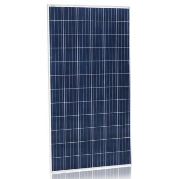 Солнечная панель Jinko Solar JKM310P