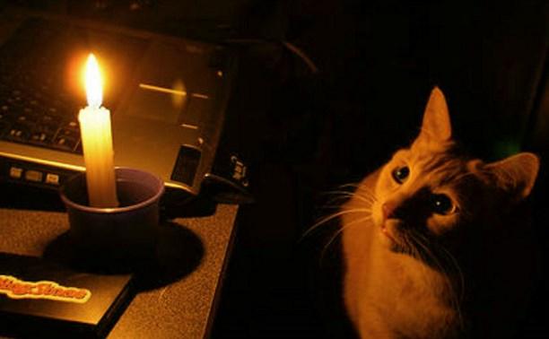 Без света даже кот грустит, нужно купить ибп